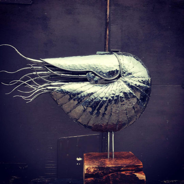 Giant Nautilus by Michael Turner